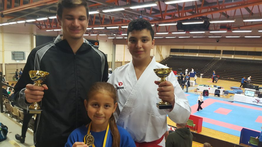 Solna Karate Cup 2017