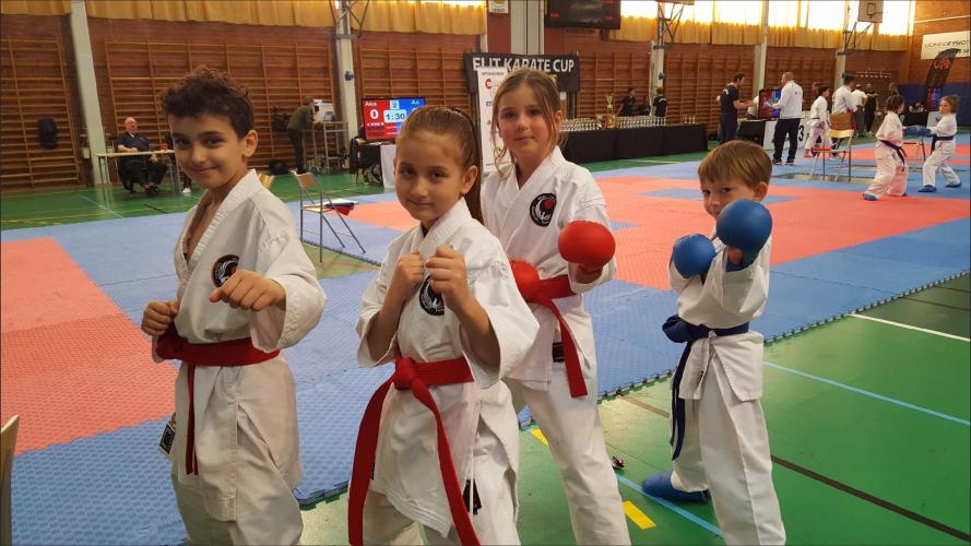 Elit Karate Cup 2018